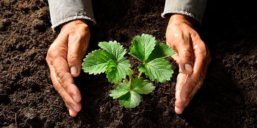 Man Group ernennt Co-Chef für nachhaltige Anlagen