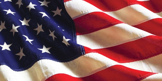 Stars and stripes: five top selectors on who to back in US equity