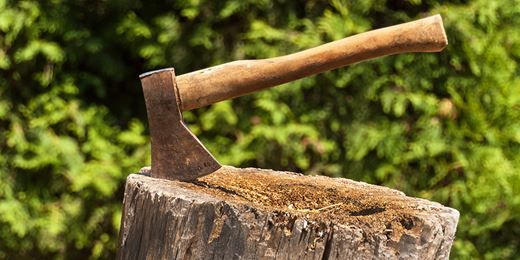 Baillie Gifford takes the axe to Schroders' UK Growth stocks