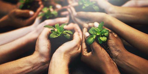 Are sustainability bond funds on the horizon?