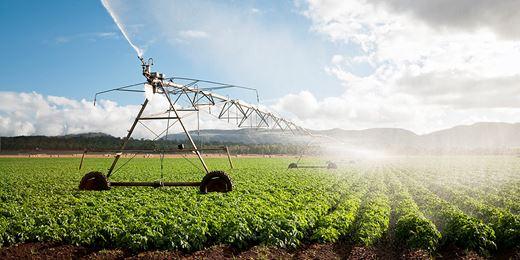 DJE-Agrar-Fonds reduziert zyklisches Exposure aufgrund der Handelszoll-Debatte