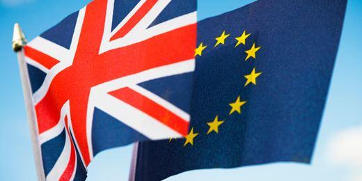 Winterflood: 11 referendum investment trust plays