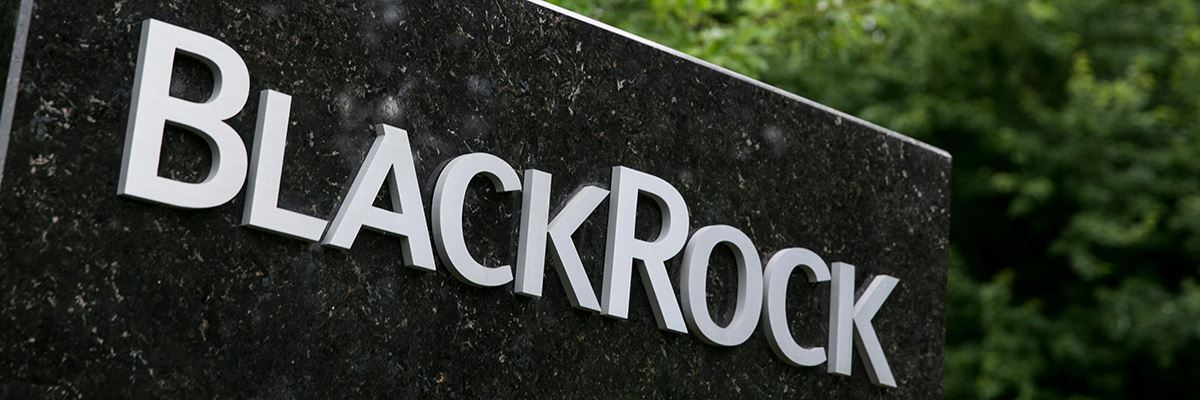 BlackRock boosts ESG capabilities with climate change deal - Citywire USA
