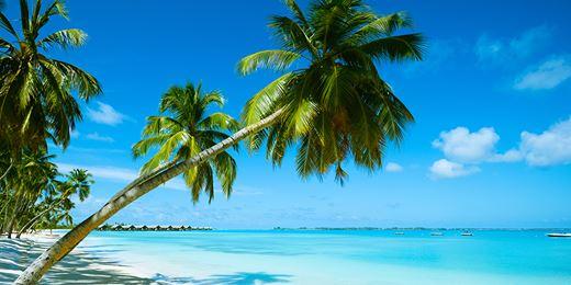 La Consob radia il cf della truffa del finto resort dei vip in Belize