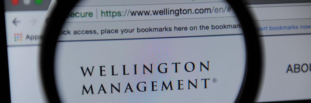 Top Vanguard Etfs 2020.Veteran Wellington Pm To Retire Stepping Off 106bn Vanguard Fund