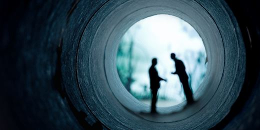 Legal brief: Tax tunnel vision can hijack asset protection plans