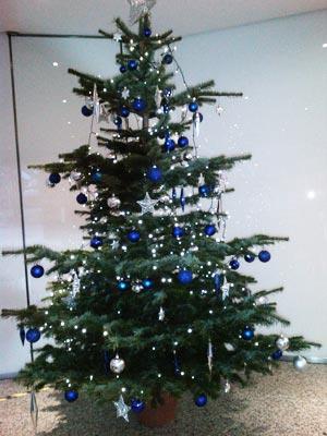 Christmas time at Ashcourt Rowan