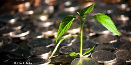 Immer mehr institutionelle Anleger bevorzugen nachhaltige Investments